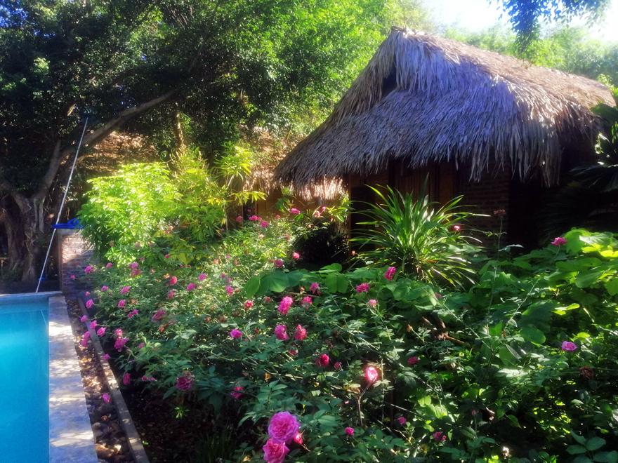 bungalow mai chau farmstay
